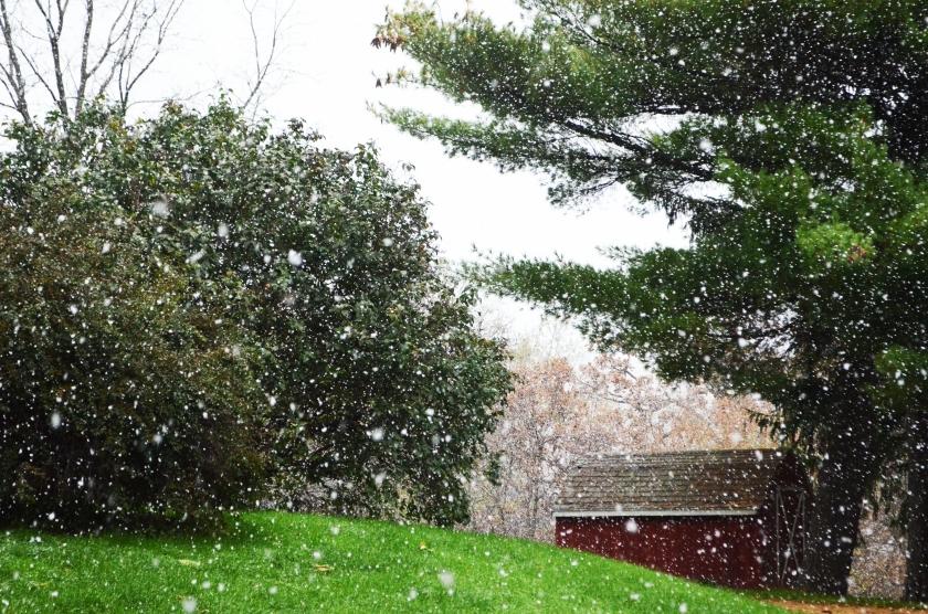 Snow2 101418