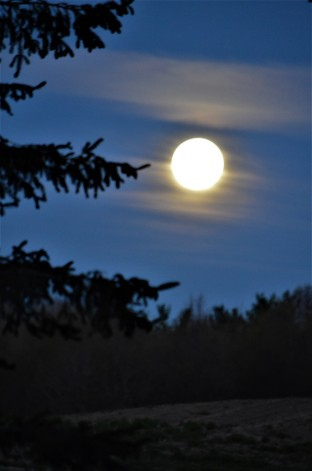 Moonset2 050720